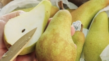 The Market Review - Abate Fetel Pears & Driscoll's Blackberries