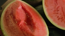 The Market Review - Watermelon and Cantaloupe
