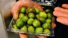 The Market Review - Pomegranate & Kiwi Berries
