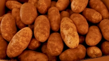 The Market Review - Russet Potatoes & Fresh Cranberries