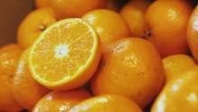 The Market Review - Orri Mandarins & Minneola Tangelos