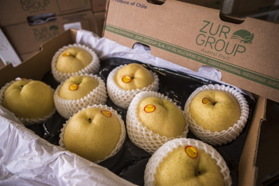 Asian Pears from Chile