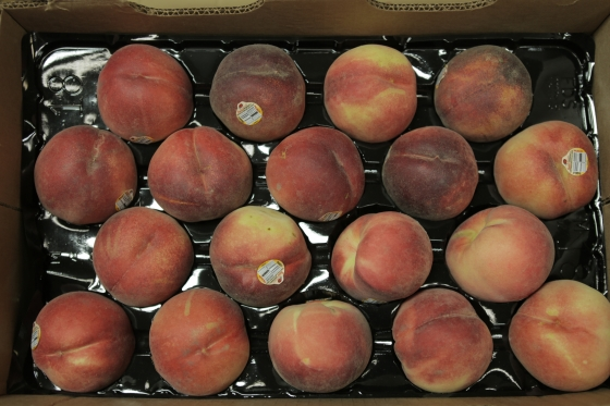 Organic White Peaches