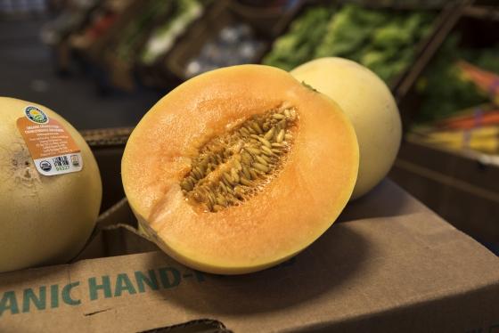 Organic Orange Flesh Honeydews