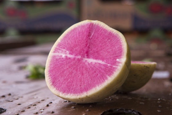 Pink Watermelon Radishes