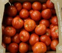 Vine-Ripe Tomatoes