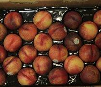 Organic Yellow Nectarines