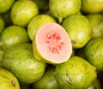Guava - Red Thai Variety