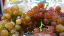 Red Seedless & Muscat Grapes