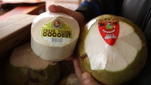 The Market Review - Young Coconut & Star Fruit