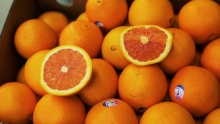 The Market Review - Cara Cara Navels & Moro Blood Oranges