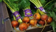 The Market Review - Organic Beets & Leeks