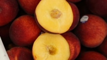 The Market Review - South American Fruit
