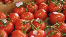 The Market Review - Vine-Ripe Tomatoes & Asparagus