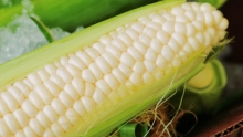 The Market Review - Coachella White Corn & Gold Nugget Mandarins