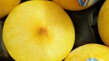 The Market Review - Flavor Queen Pluots & Honeysuckle Rose Pluots