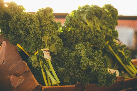 Leafy green organic Kale