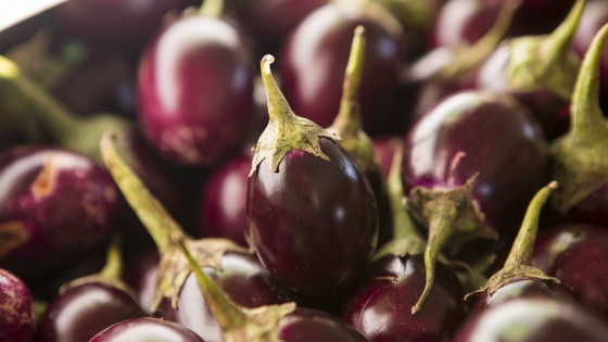 Purple Indian Mini Eggplant