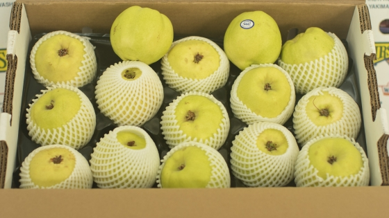 Pineapple Quince