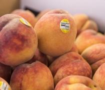 Organic Yellow Peaches